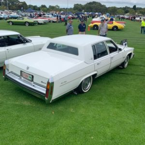 Rear of Cadillac For Hire